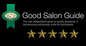 good salon guide five star award